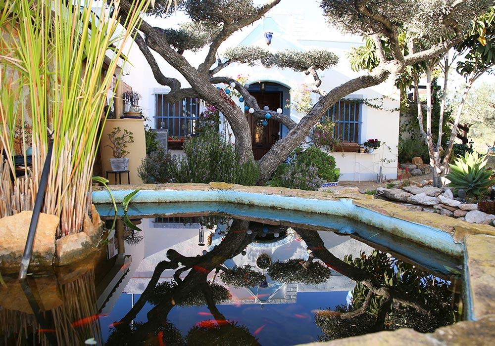 Estanque del Ecoturismo rural Villafeliche